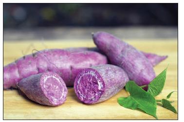 Purple Sweet Potato Takes On Colon Cancer Crimson Publishers Com